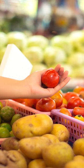 Manipuladores de Alimentos | Certificado Oficial Valido para España y UE